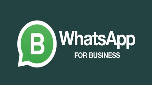 Kenali Aplikasi Transaksi Whatsapp untuk Bisnis